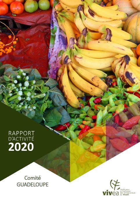 Photo couverture Rapport activité Guadeloupe 2020