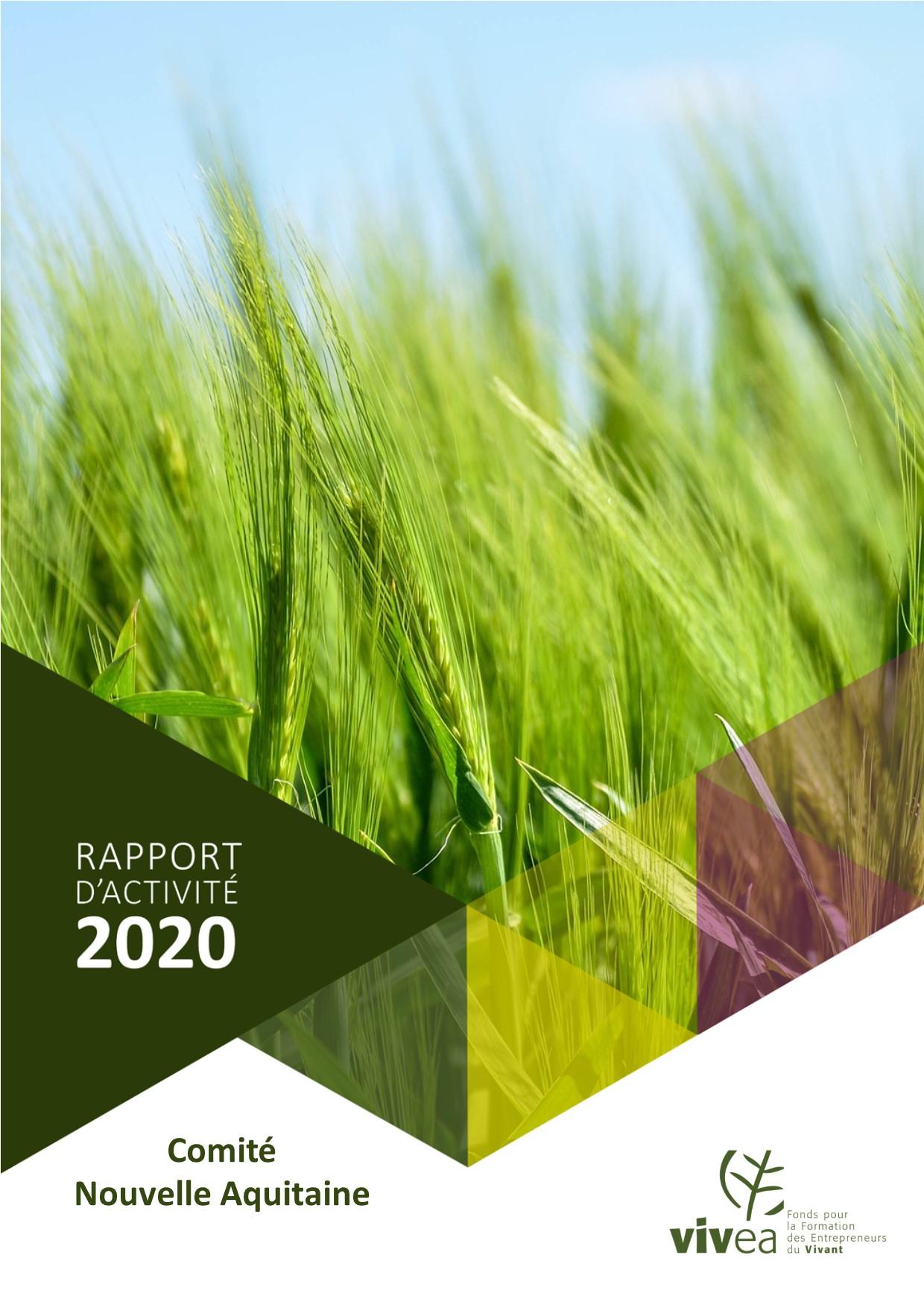 couverture rapport activite 2020 nouvelle aquitaine