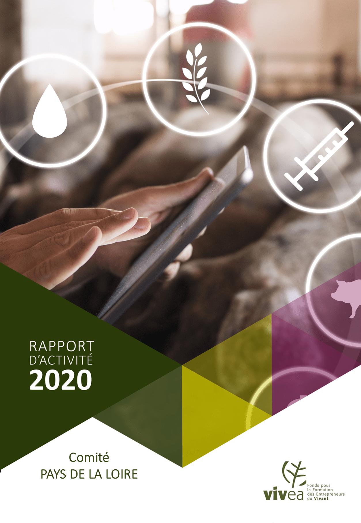 rapport activité PDL 2020
